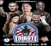 WWE Tribute To The Troops 2011 12 13 MKV